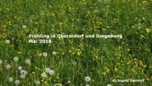 Diashow Oberstdorf